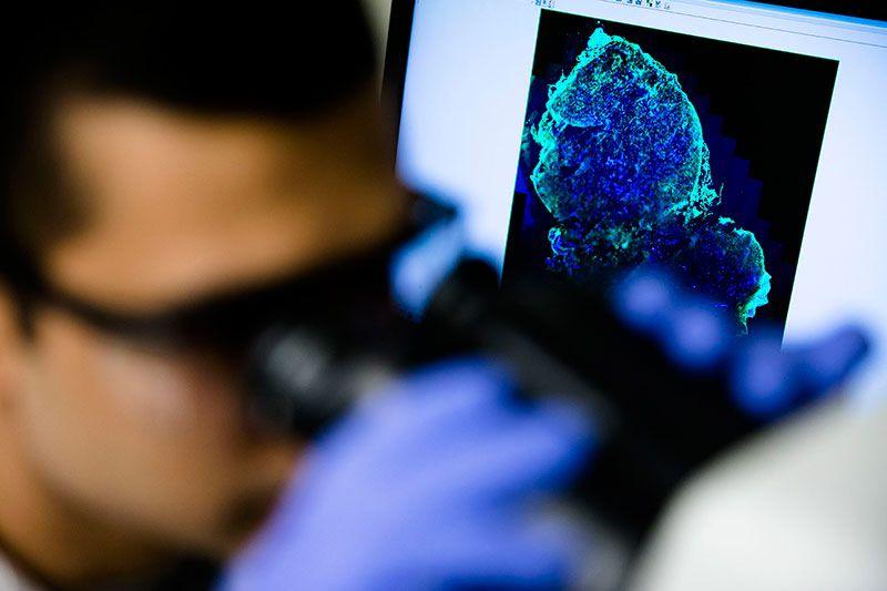 diagnostic-pill-microscope-image.jpg