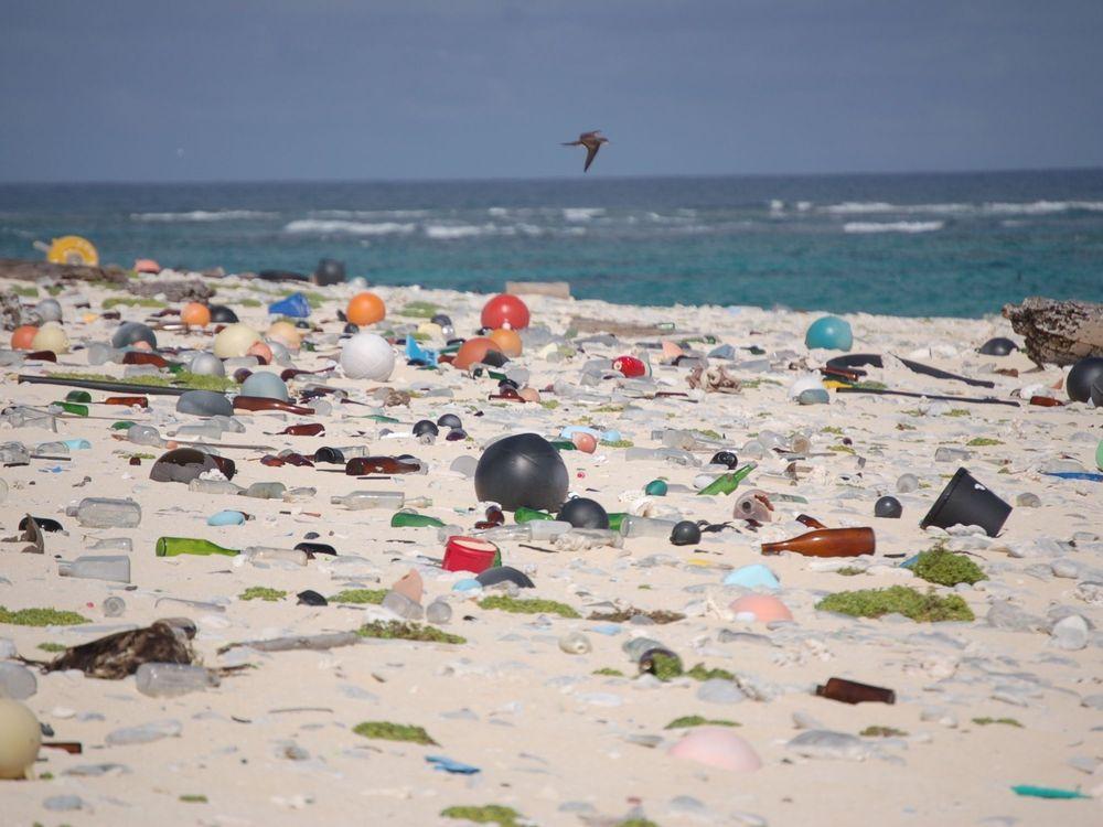Beach_strewn_with_plastic_debris_(8080500982).jpg