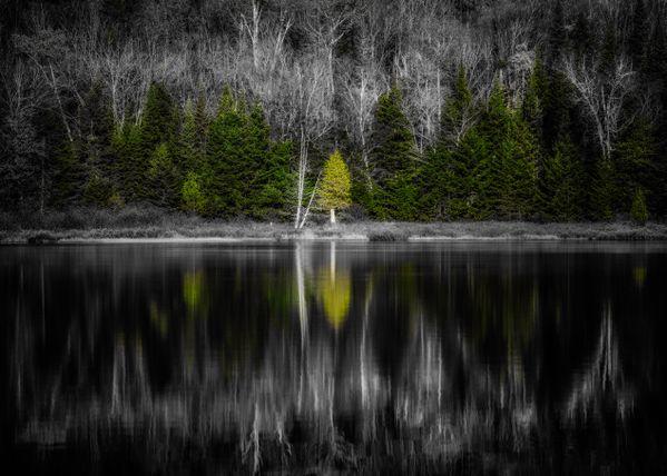 Solitude Up-North thumbnail