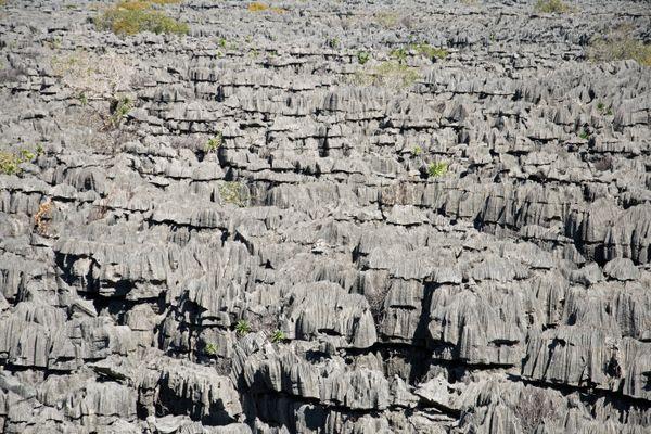 Tsingy Tsingy thumbnail