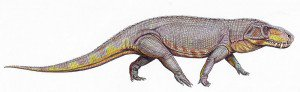 20110520083223Prestosuchus-restoration-300x92.jpg