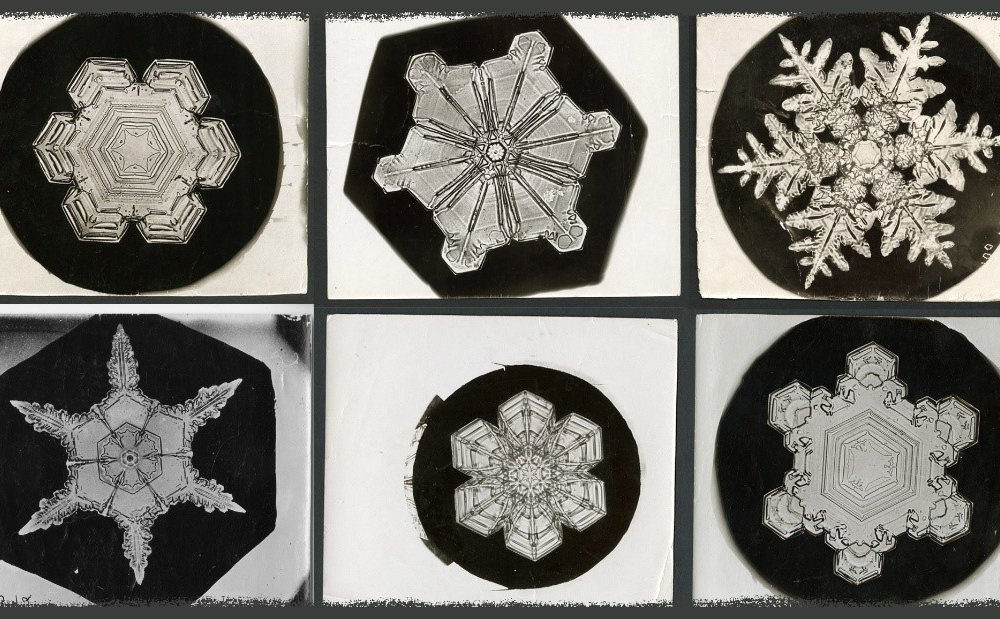 """The original photos from late 1800s by famous snowflake photographer Wilson """"Snowflake"""" Bentley, are stored in the Smithsonian Archives. His pictures were instrumental in helping scientists examine snow's crystalline properties. (Erin Malsbury, Smithsonian Open Access, Wilson A. Bentley)"""