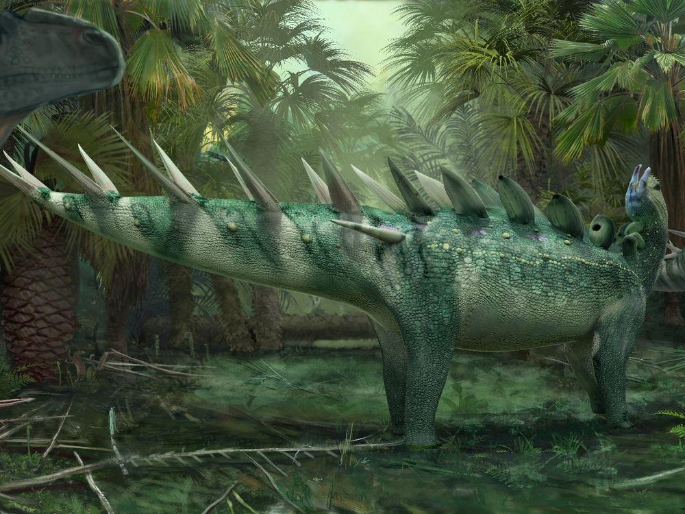 Kentrosaurus readies itself for an attack by an Allosaurus