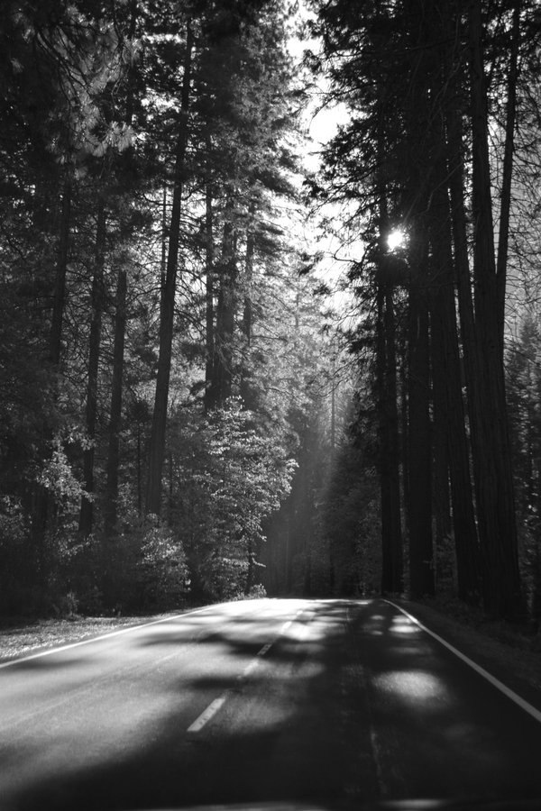 Road to Yosemite thumbnail