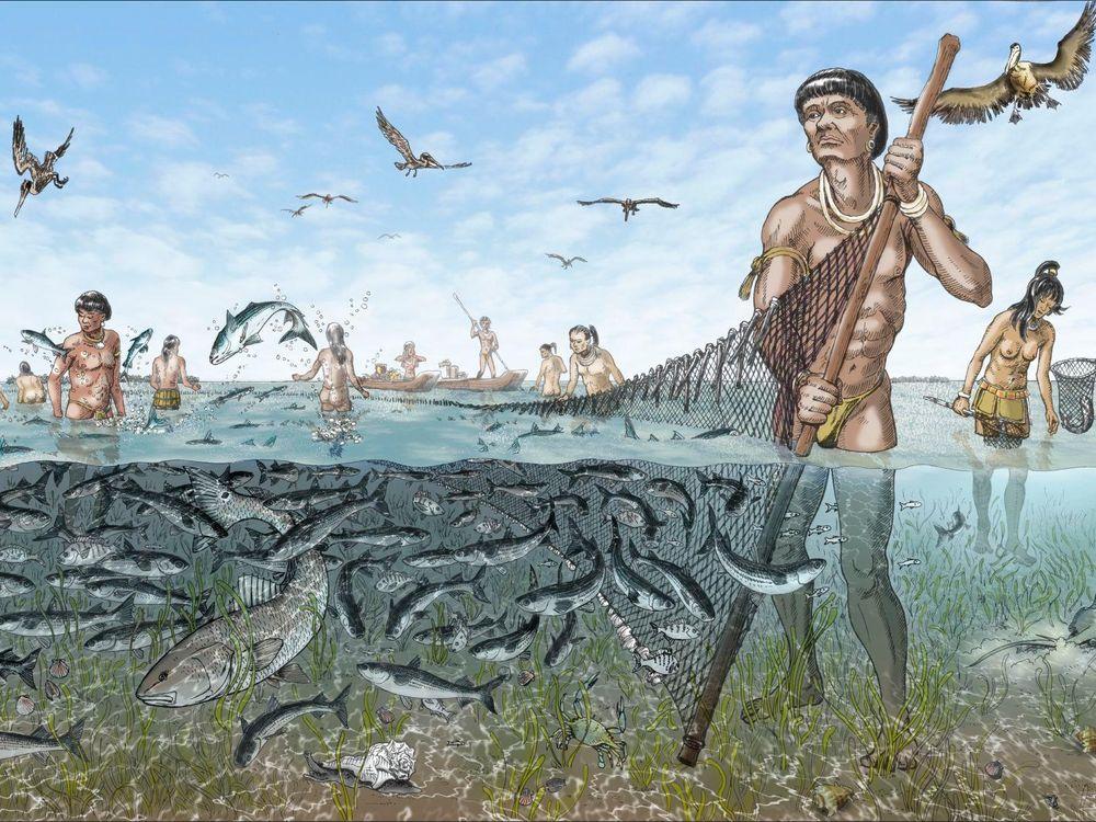 Calusa fishermen