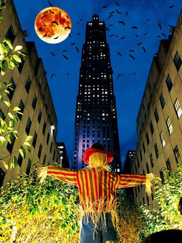 Bats @ Rockefeller Center thumbnail