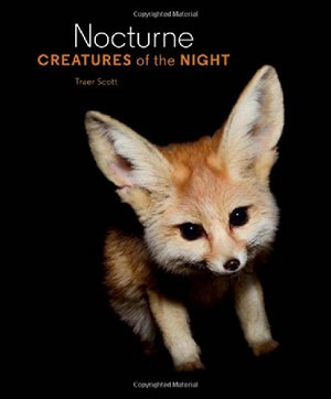Preview thumbnail for Nocturne: Creatures of the Night