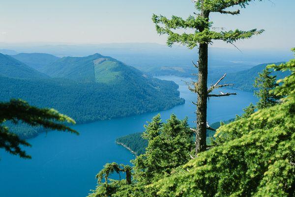Lake Cushman from Mt Ellinor thumbnail