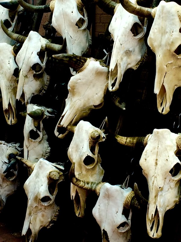 Skulls in Marketplace thumbnail