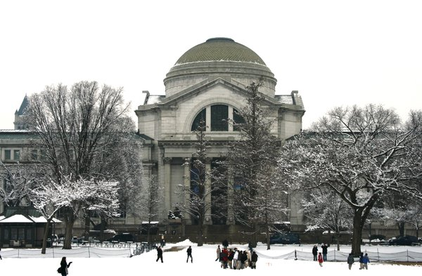 Natural History in Snow thumbnail