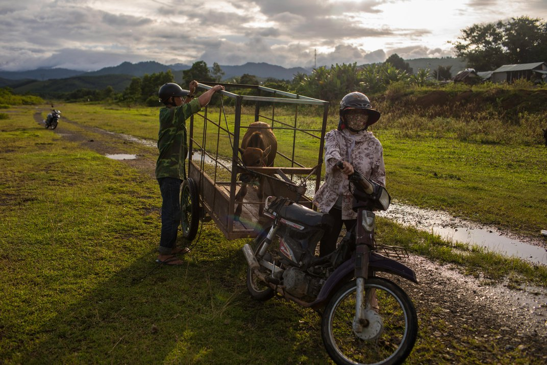 Revisiting Vietnam 50 Years After the Tet Offensive