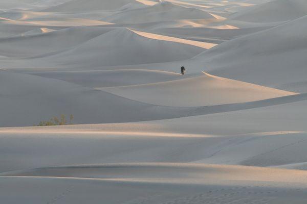 Dune Photographer thumbnail
