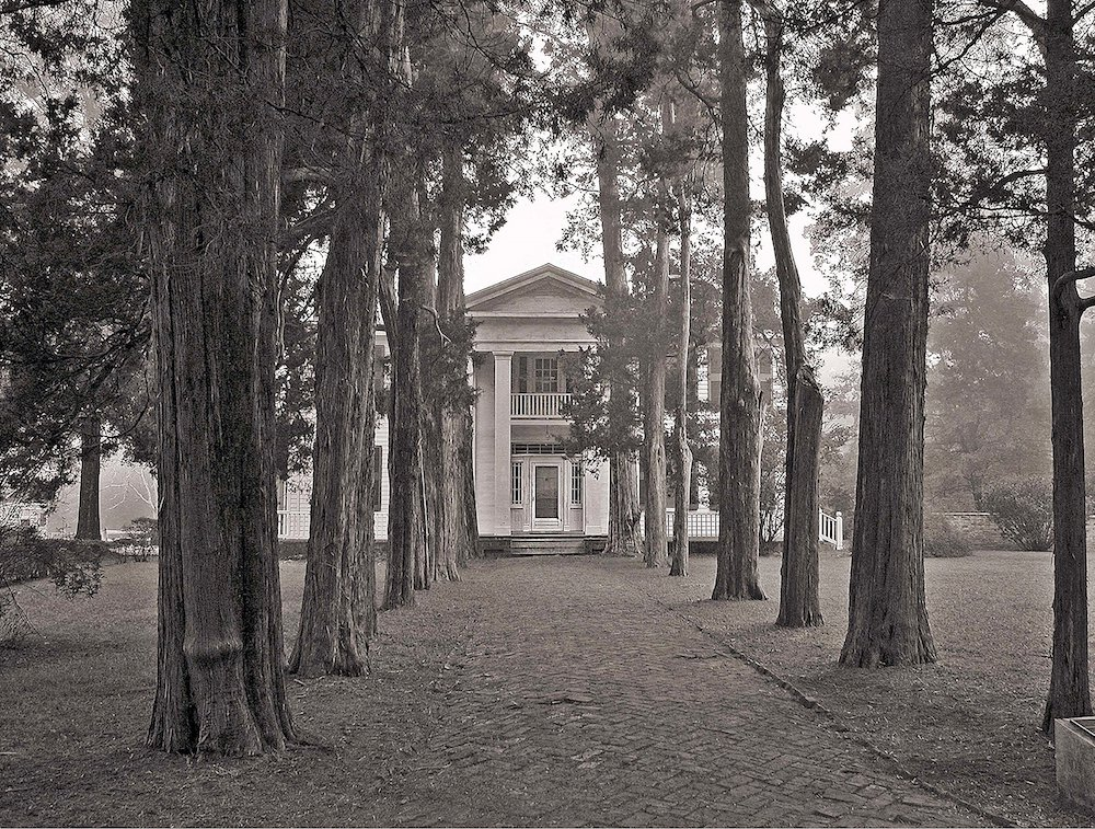 Get Lost in the Landscape that Inspired William Faulkner's Greatest Novels