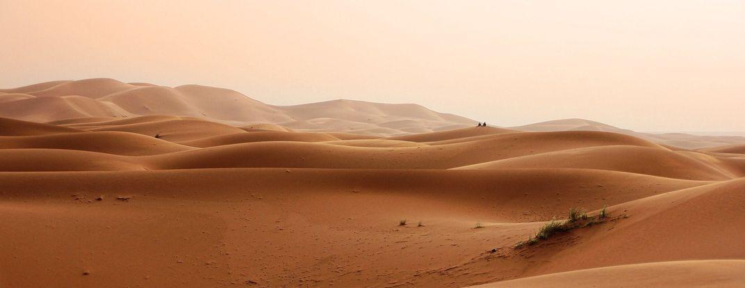 Open desert landscape