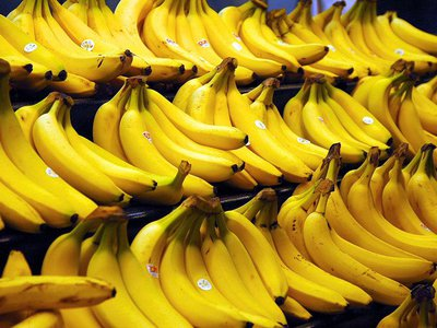 A previous strain of the TR4 fungus led banana producers to switch from the Gros Michel strain to the now-dominant Cavendish variety