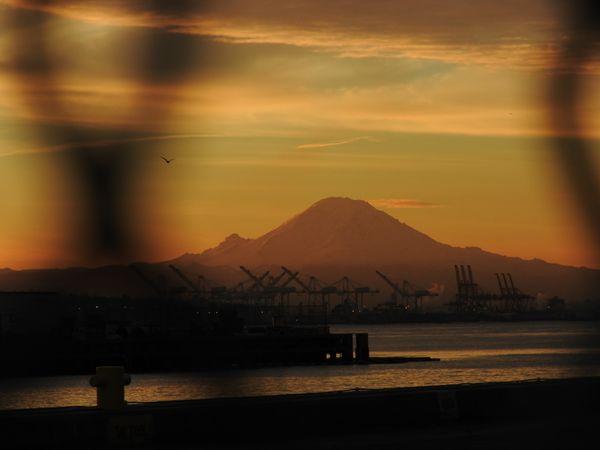 Mount Rainier from the Pier thumbnail