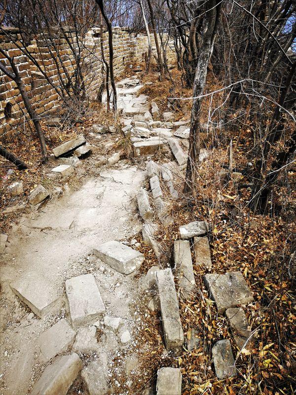 Wild path along the Great Wall thumbnail