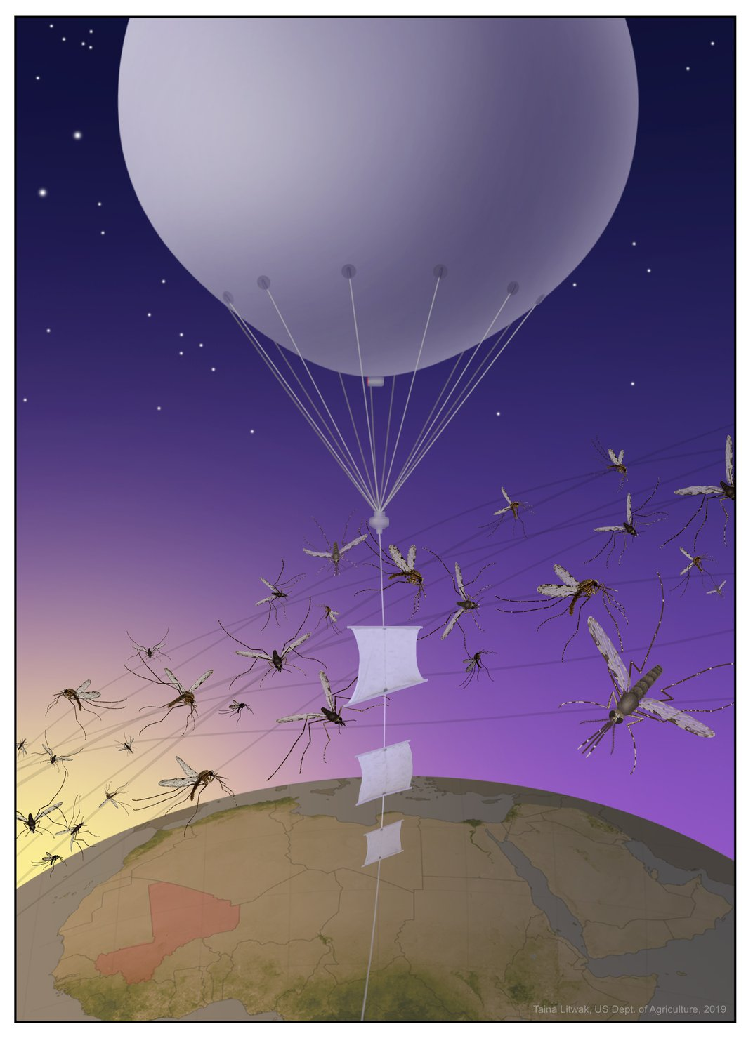 An illustration of a white balloon in the dark blue sky with mosquitoes flying around it.
