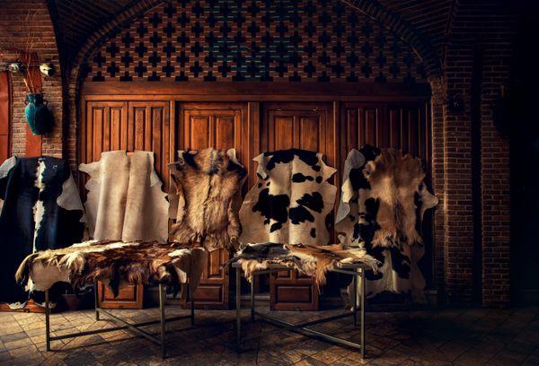 Wool-Skin Store in Tehran thumbnail