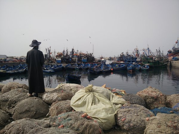 Essaouira, Medina: where fishermen park thumbnail