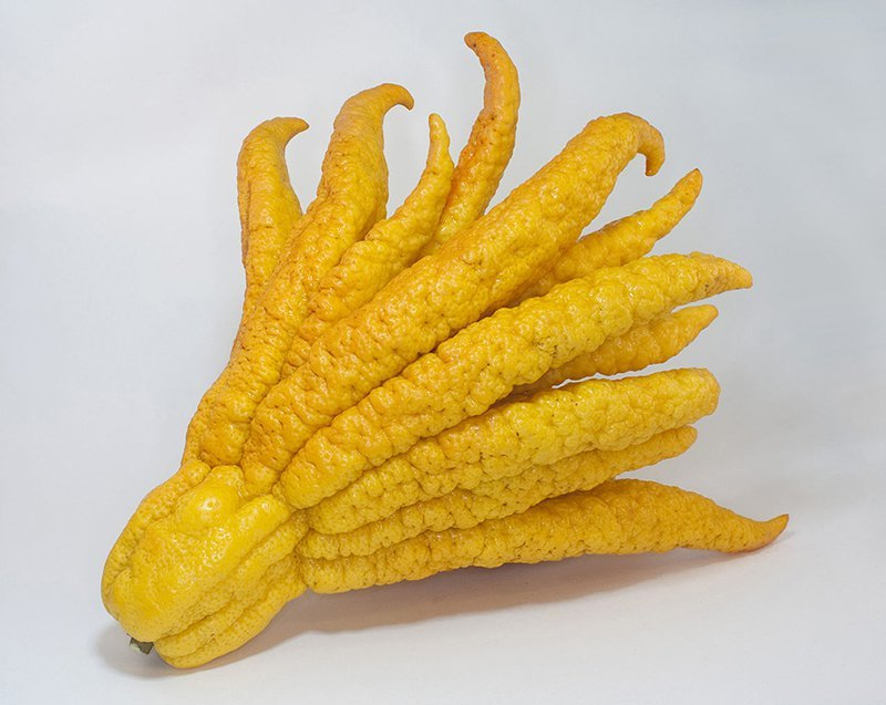 What the Heck Do I Do With a Buddha's Hand?