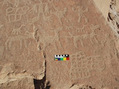 The Cruces de Molinos site in the Chilean Andes contains rock art depictions of llama caravans, possibly marking a ceremonial site for caravaners passing through the mountains.