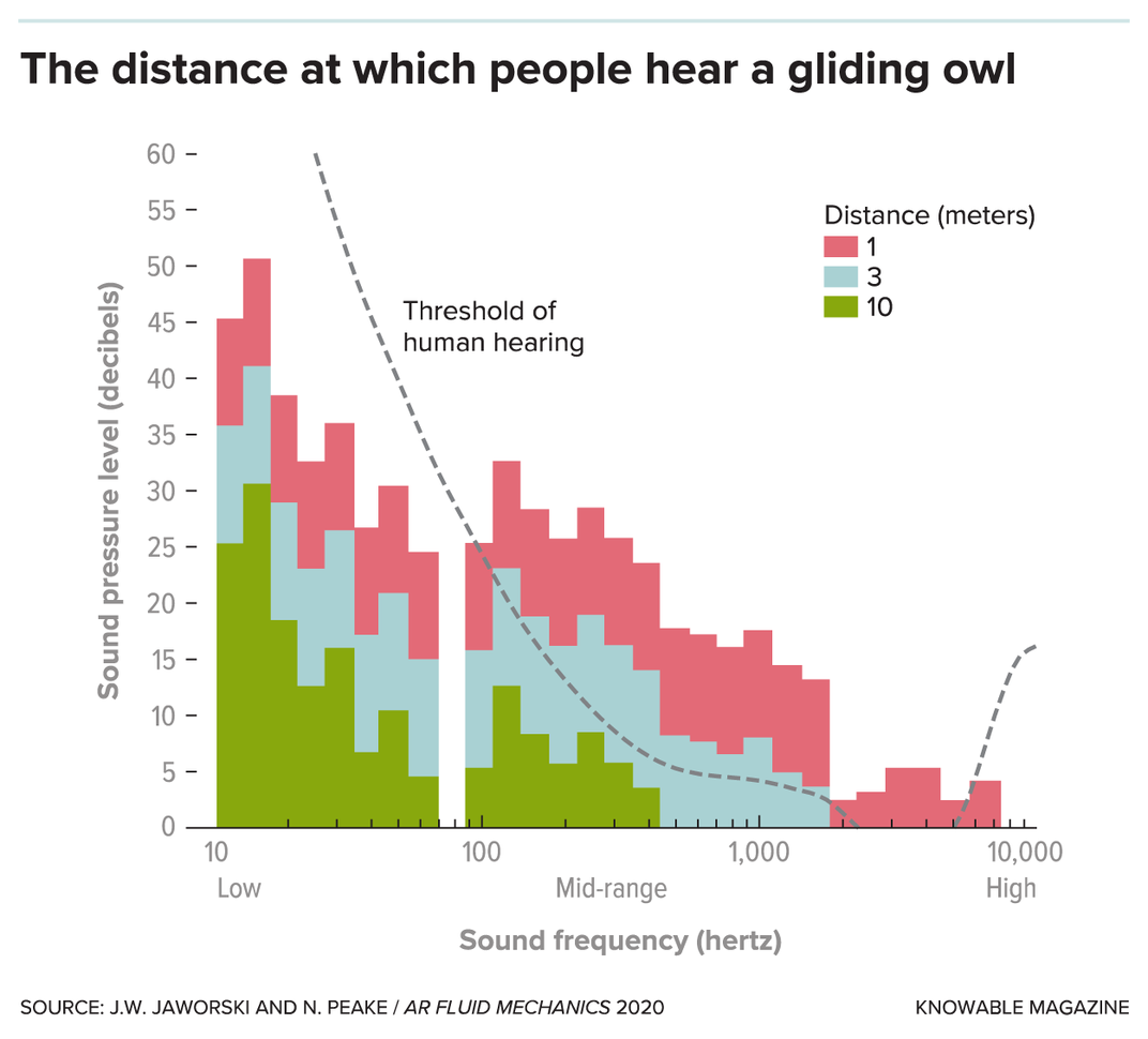 To Silence Wind Turbines and Airplanes, Engineers Are Studying Owl Wings