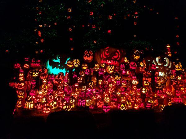 Jack O' Lanterns of Halloween Town thumbnail
