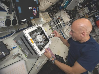 Astronaut Luca Parmitano uses a sample-spinning centrifuge on the I.S.S. to expose the bacteria to the equivalent of Mars' gravity.