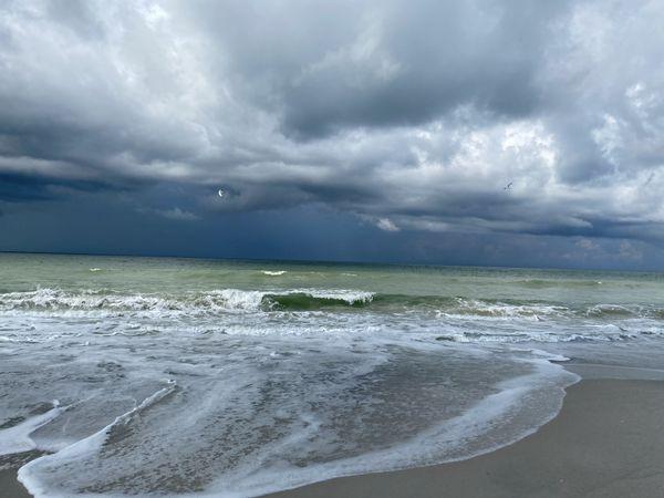 Naples Beach, Florida thumbnail