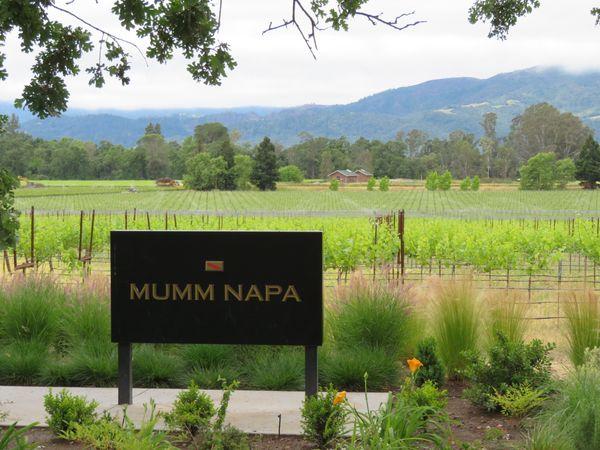 Mumm Winery - Napa Valley, CA thumbnail