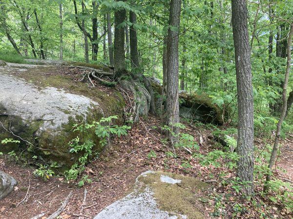 Jake's Rocks 0001 thumbnail