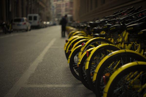Bicycles in Shanghai thumbnail