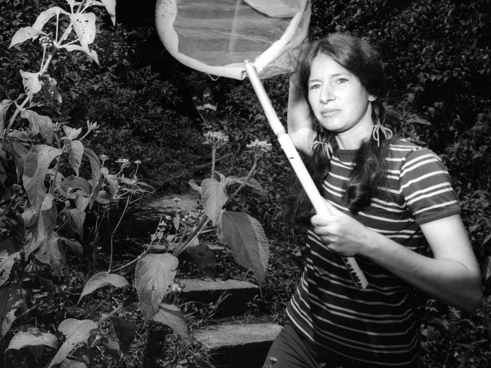 When STRI staff scientist Annette Aiello first arrived in Panama to study butterflies in 1976, she lived and worked at the Smithsonian research station on Barro Colorado Island. Credit: STRI Archives.