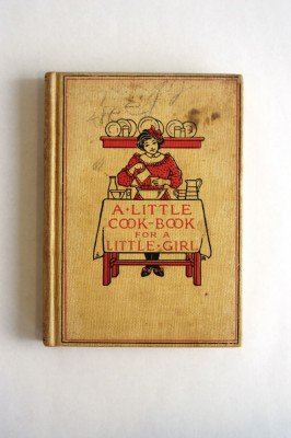 20110520090111Book-cover-266x400.jpg