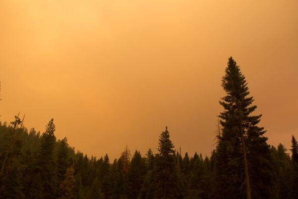 Wildfire Near Mariposa Grove (Yosemite) thumbnail