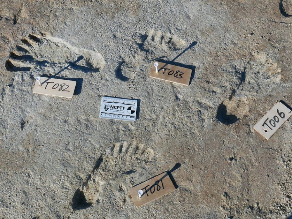 footprints with labels