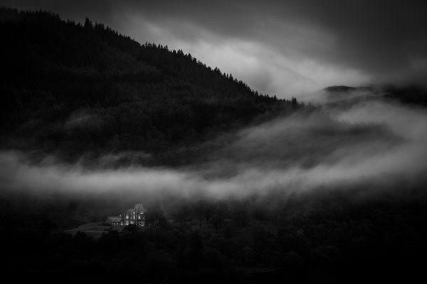 The House Below the Fog thumbnail