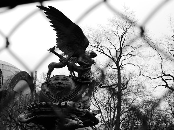No wings for this cage_Cathedral of St. John the Divine, New York thumbnail