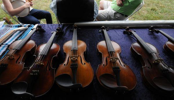 Bluegrass Fiddles thumbnail