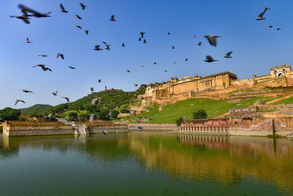Amer Fort in Jaipur thumbnail
