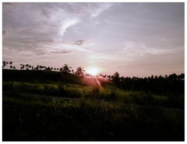 Sunset thumbnail