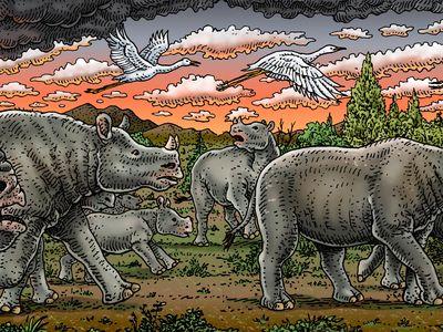 Two-horned Diceratherium rhinos