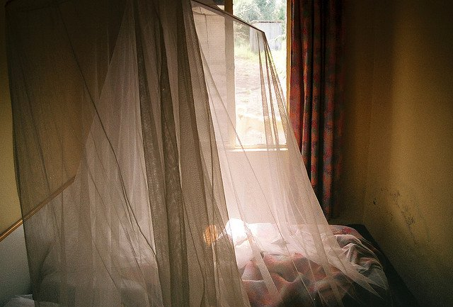 In places where malaria thrives, mosquito nets are used to keep the bugs away from people as they sleep.
