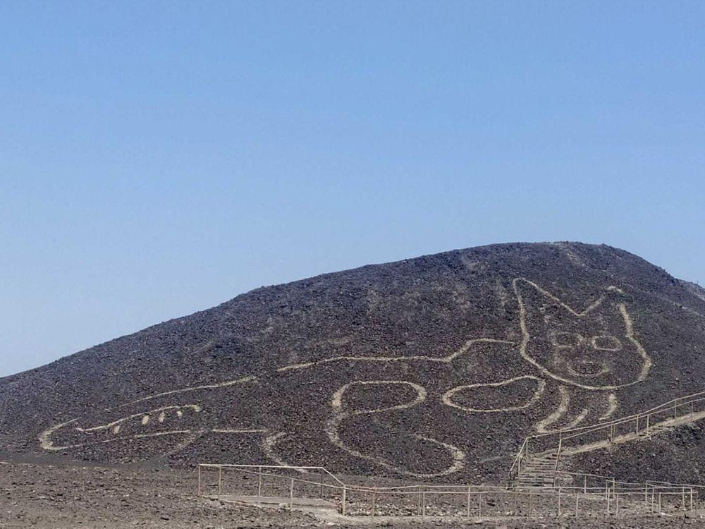 Nazca Line Depicting Cat
