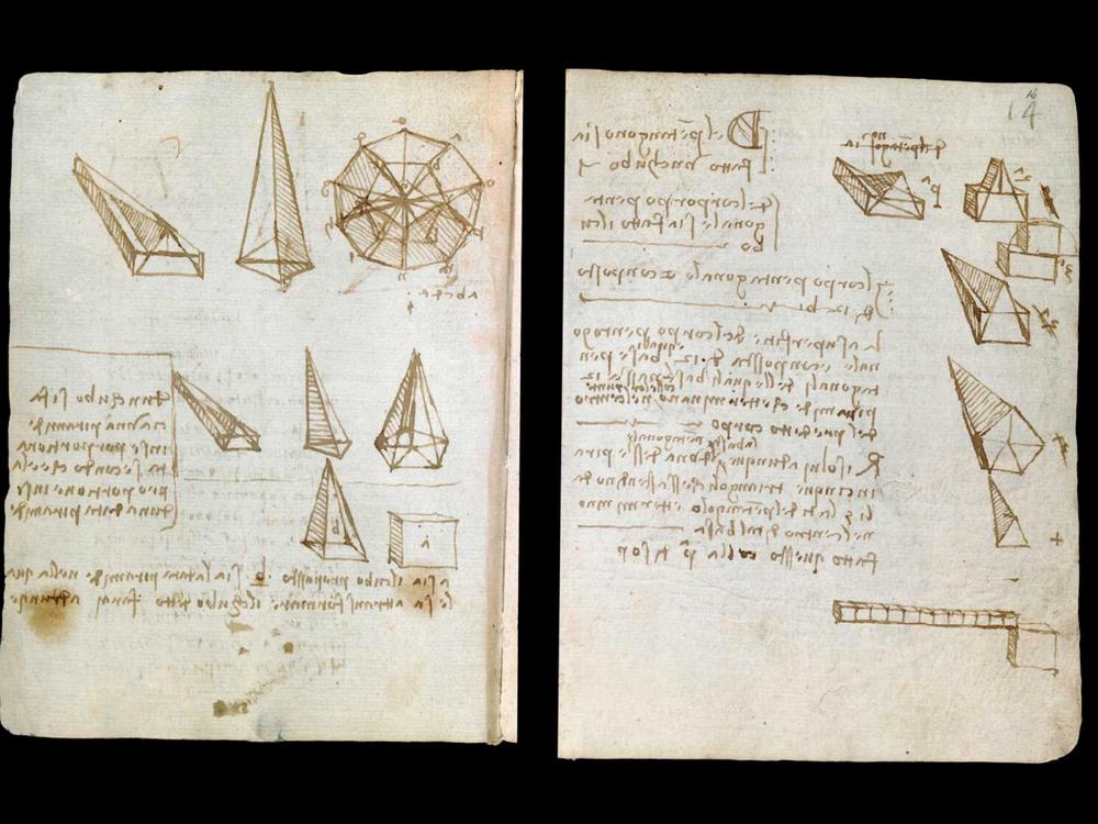 da vinci codex illustrations