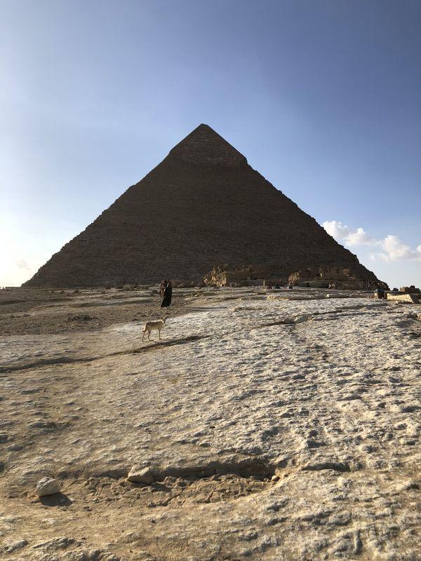 A dog at the Great Pyramid thumbnail