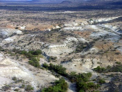 An overview of the Olorgesailie basin landscape, where the archeological site exists that contains stone weapons and tools