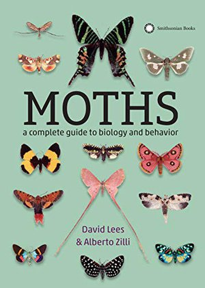 Preview thumbnail for 'Moths: A Complete Guide to Biology and Behavior