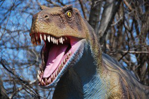 20110520083228dinosaur-brookfield-zoo-300x200.jpg